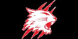 swindon wildcats logo